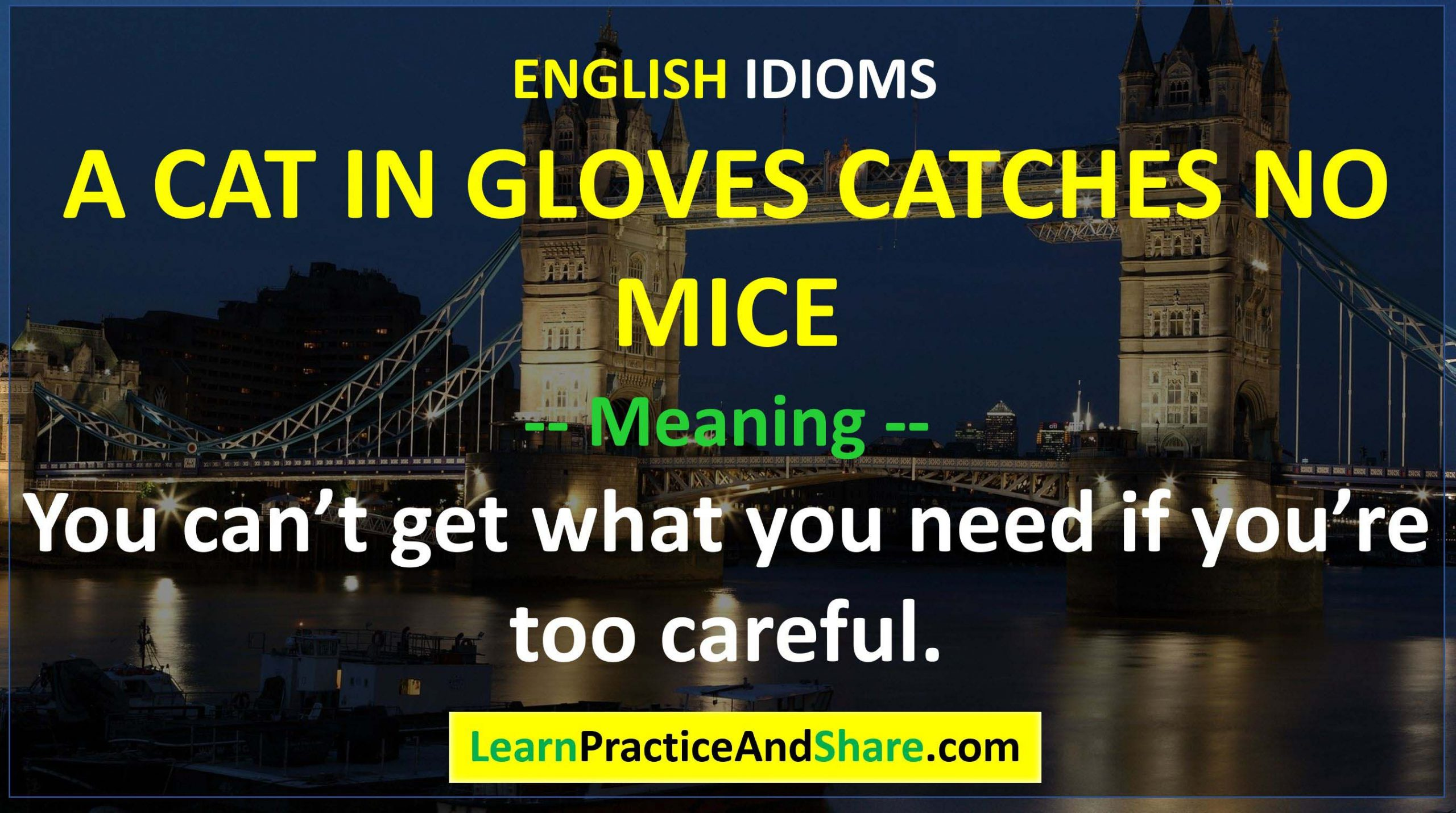 English Idiom - A Cat In Gloves Catches No Mice