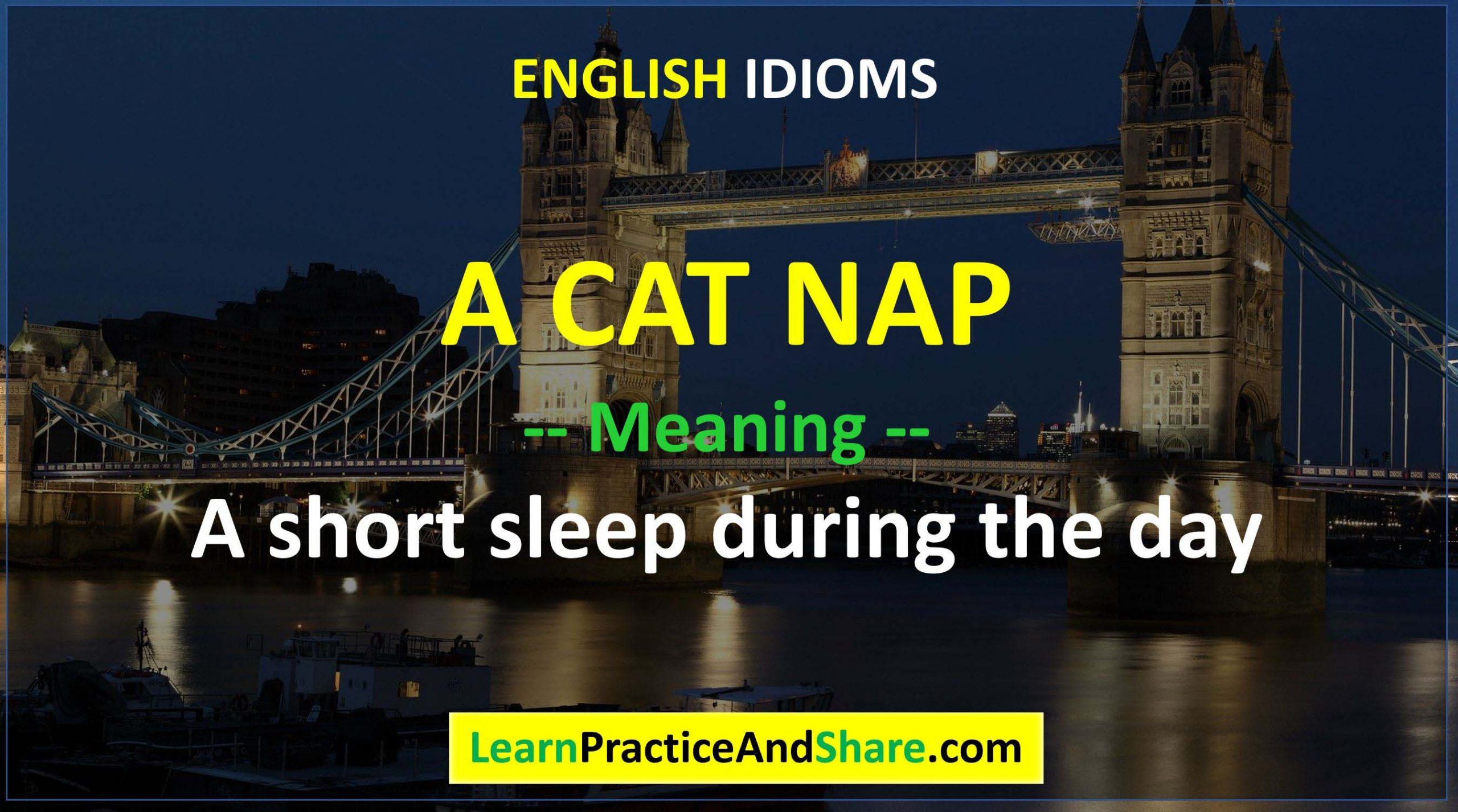 English Idiom - A Cat Nap