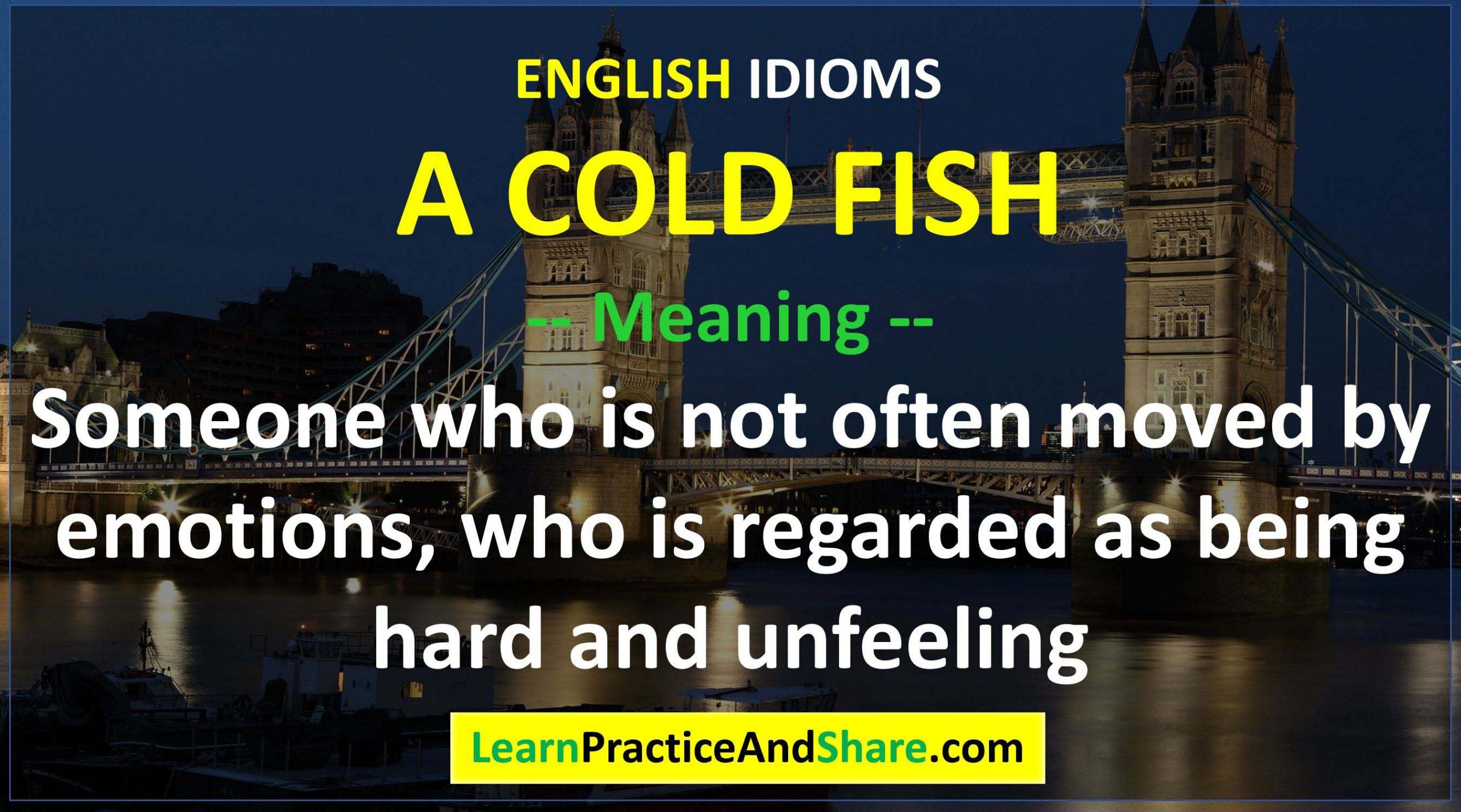 English Idiom - A Cold Fish