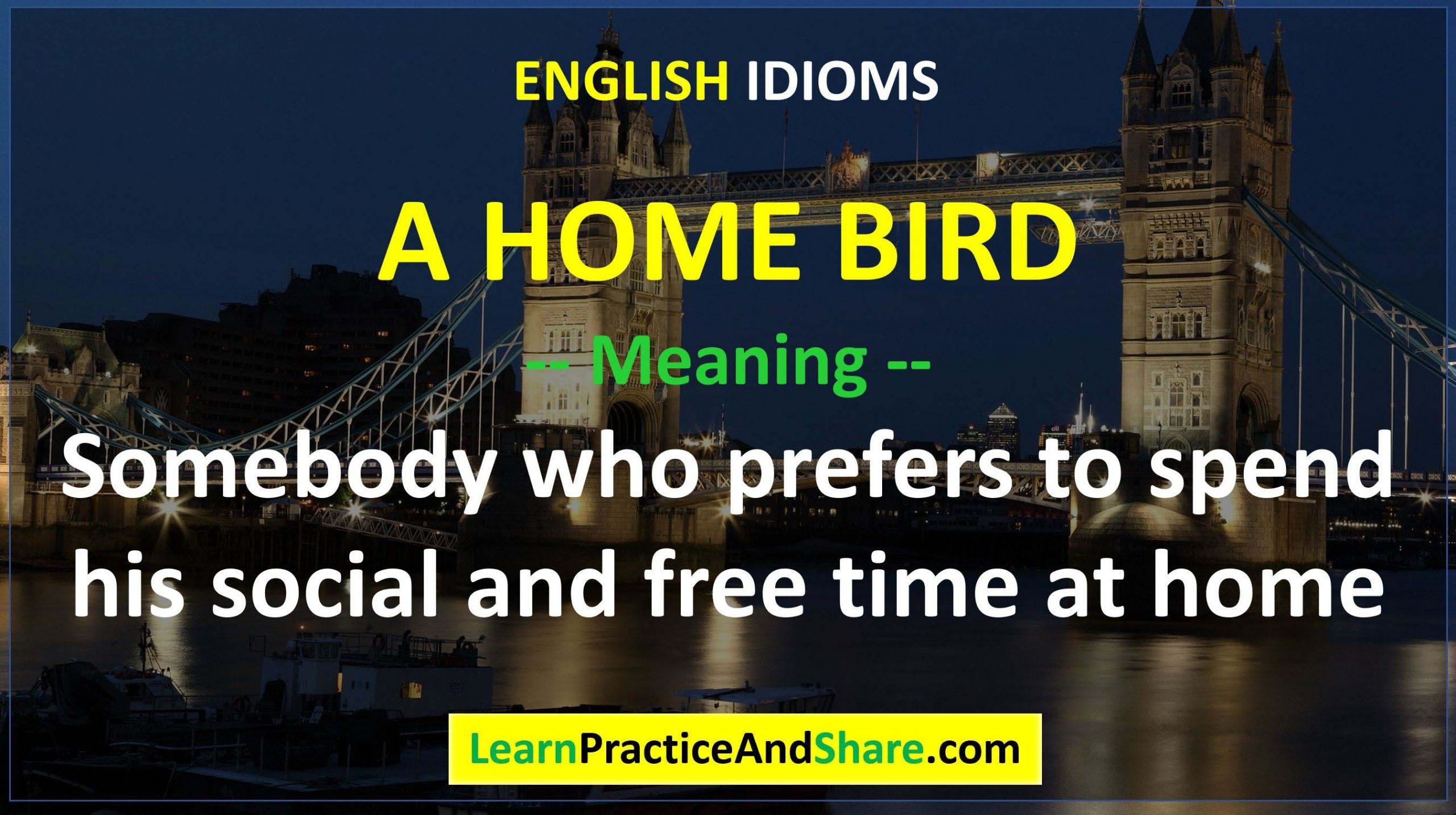 English Idiom - A Home Bird