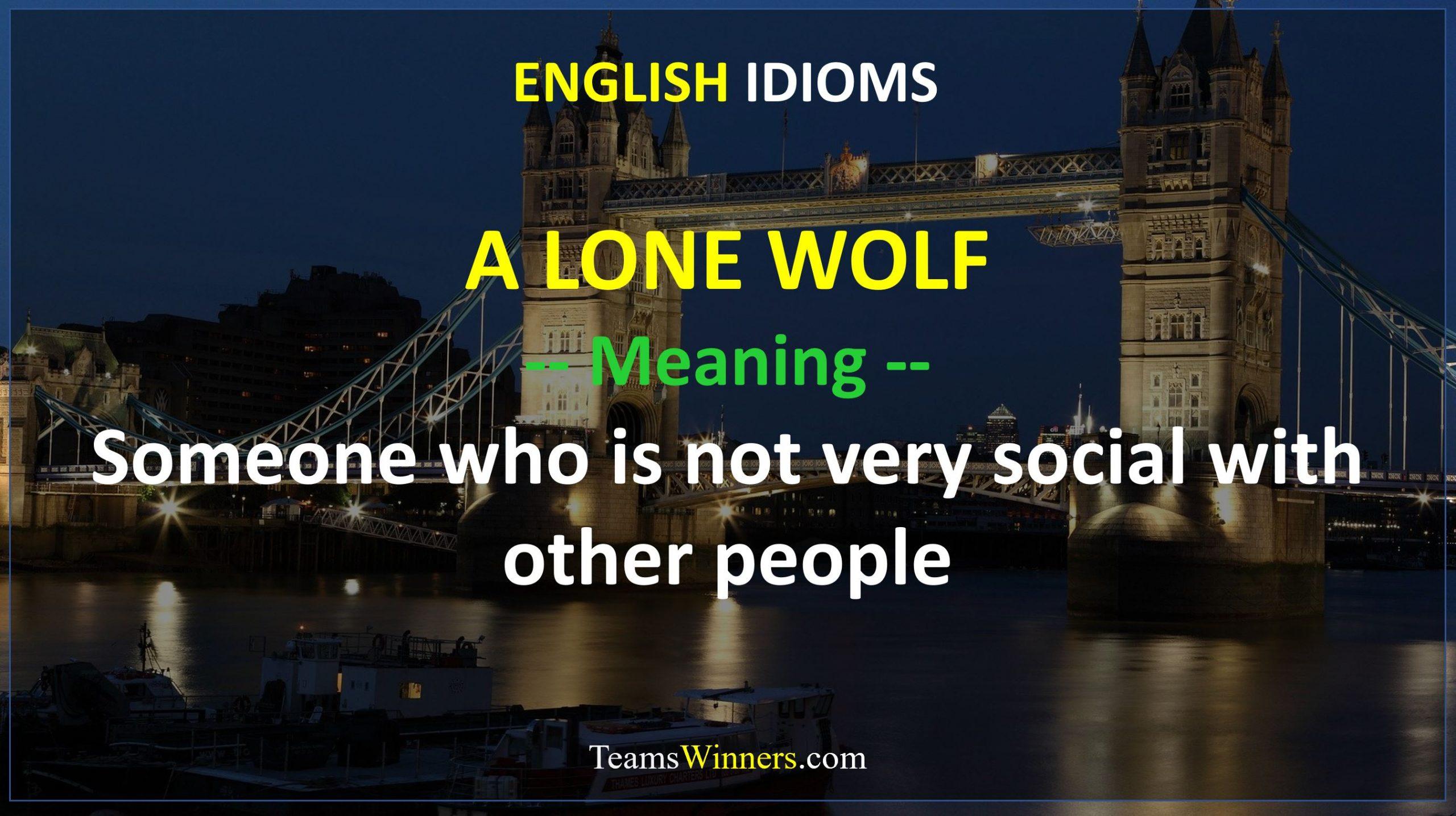 English Idiom - A Lone Wolf