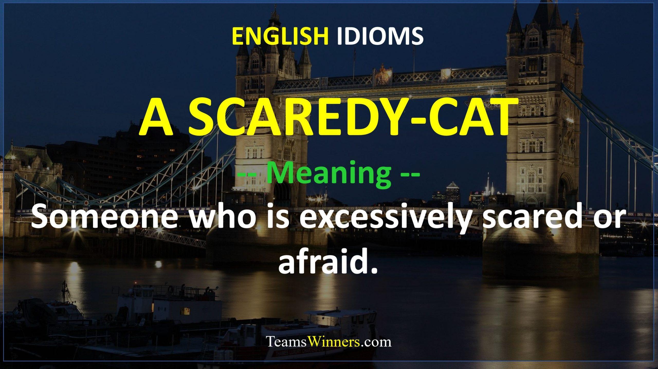 English Idiom - A Scaredy-Cat