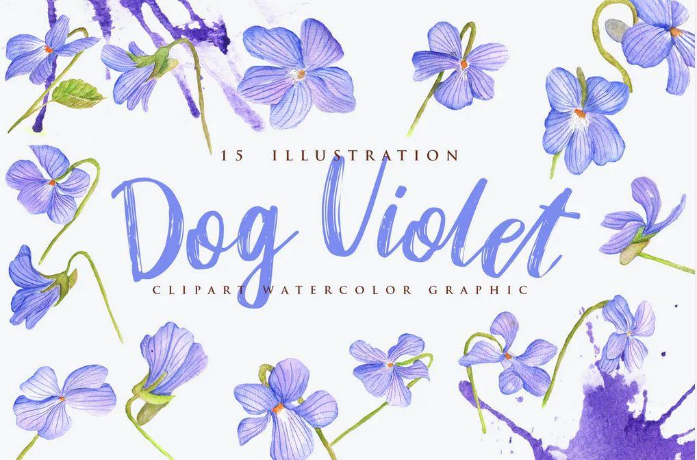 15 Watercolor Dog Violet Flower Illustration