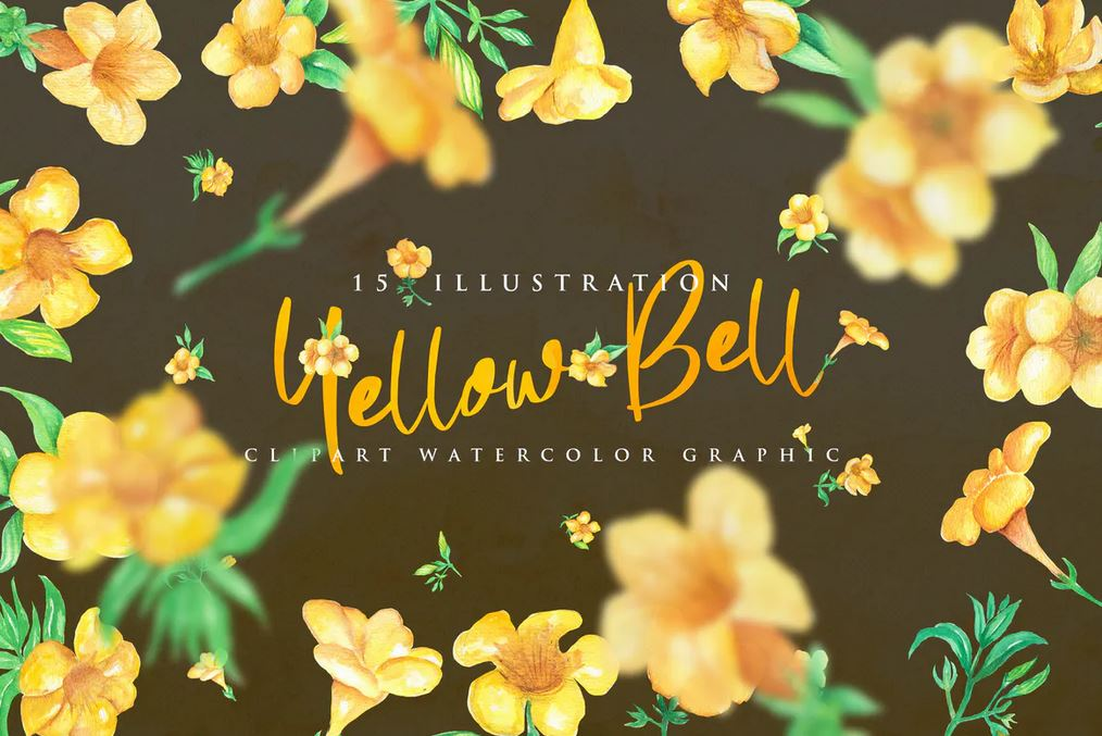 15 Watercolor Yellow bell Flower Illustration