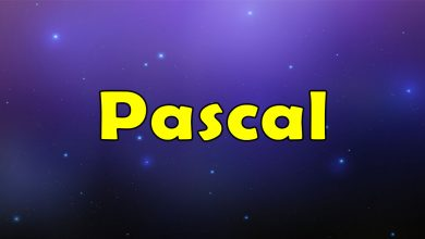 Photo of Awesome Pascal – Massive Collection of Resources