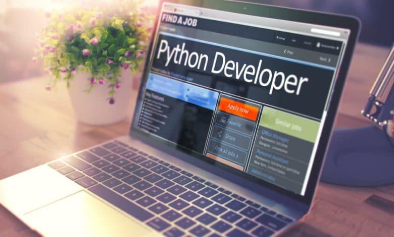 MicroPython developer