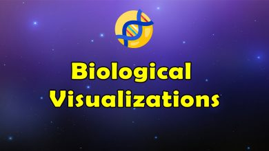 Photo of Awesome Biological Visualizations – Massive Collection of Resources