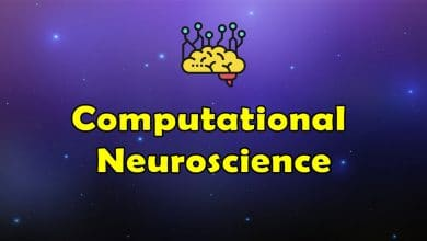 Photo of Awesome Computational Neuroscience – Massive Collection of Resources