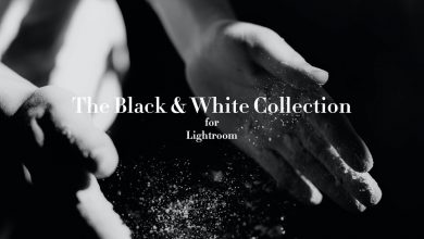 Photo of Black and White Lightroom Presets