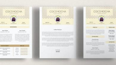 Photo of [InDesign] Creative Director CV Resume Template