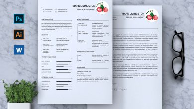 Photo of Accounting Accountant CV Resume for Photoshop and Illustrator