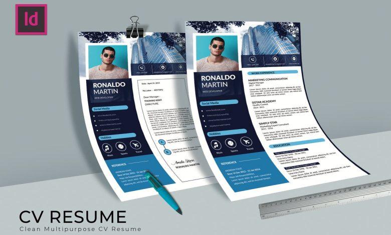 Developer CV Resume for InDesign